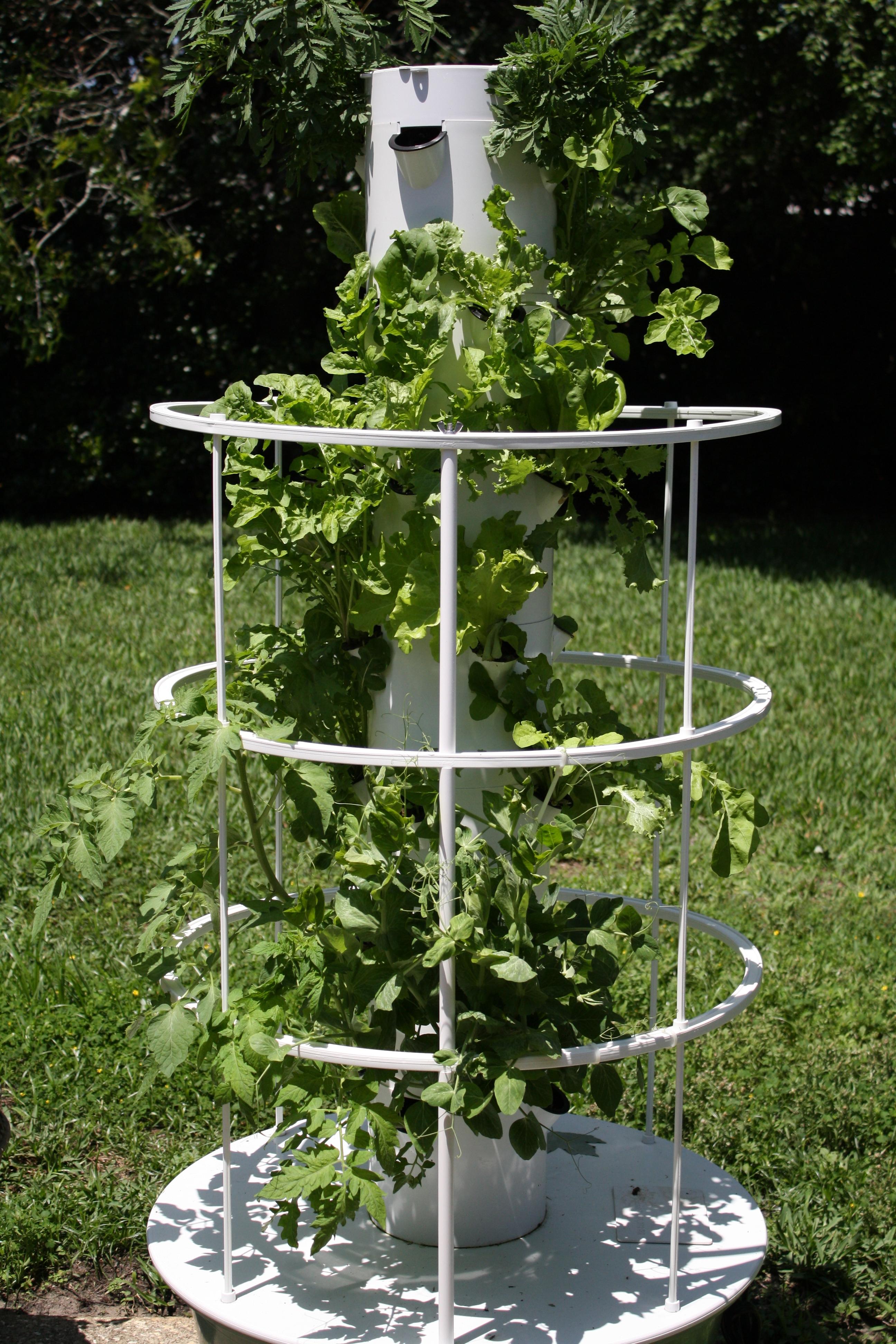 Tower Garden Aeroponics Review Garden Ftempo